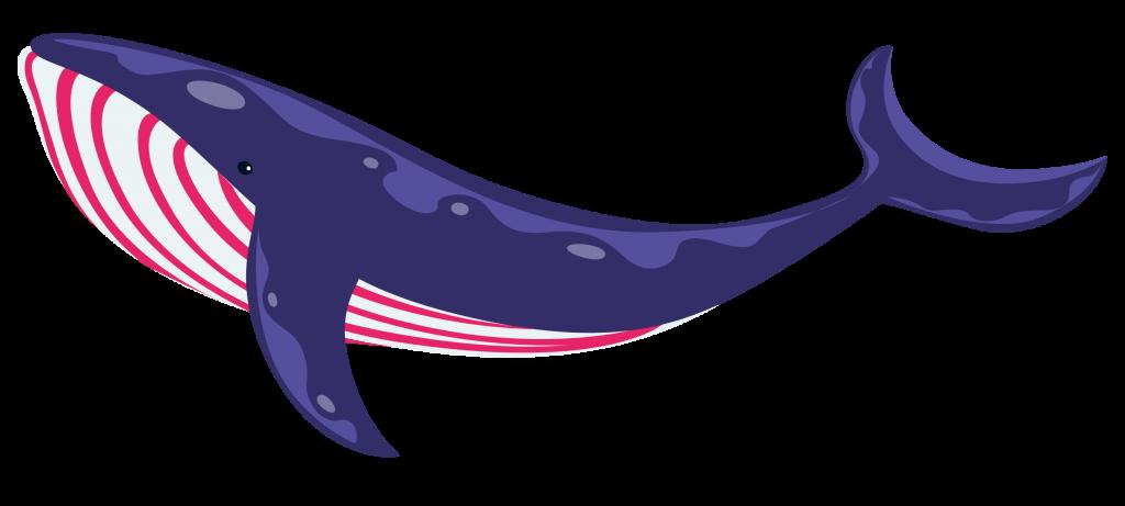 fyio-blue-whale_purple